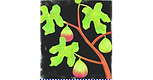 FIGTREE.png