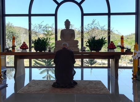 The Land of Mindfulness on my mind, Plum Village