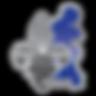 Fédération Québécoise de Boxe Olympique