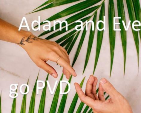 PVD Coatings ADAM EVE EDEN coating technology