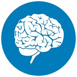 MRI Brain Postitioning