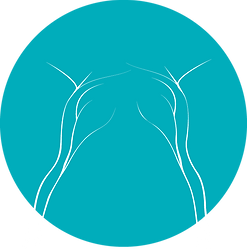 MRI Neurogram Positioning | MRI Nerve Study | MR Neurogram