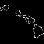 hawaii-silhouette-thumbnail.png
