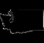 washington-silhouette-thumbnail.png
