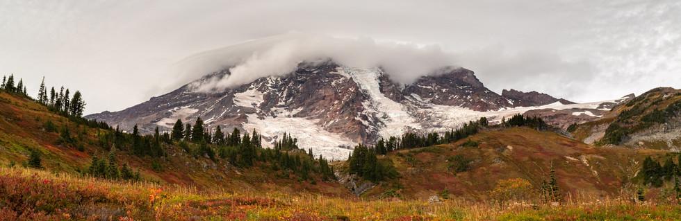 Mt. Rainer National Park - Panorama