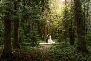 CandD-Wedding-561-Edit.jpg