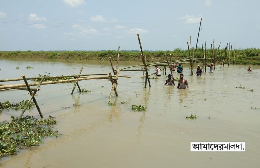 Farmers built a bridge in lockdown