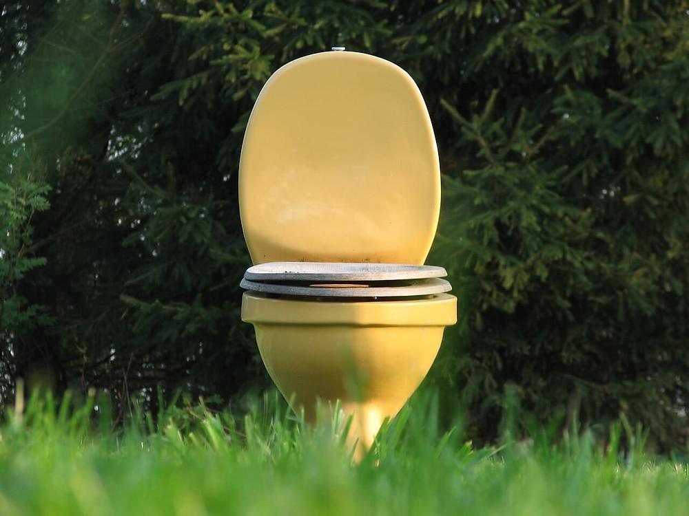 Toilet trouble family
