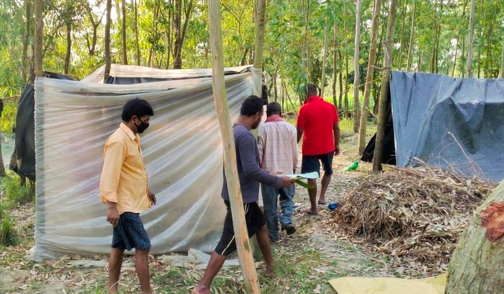 Gazole men quarantine themselves in jungle