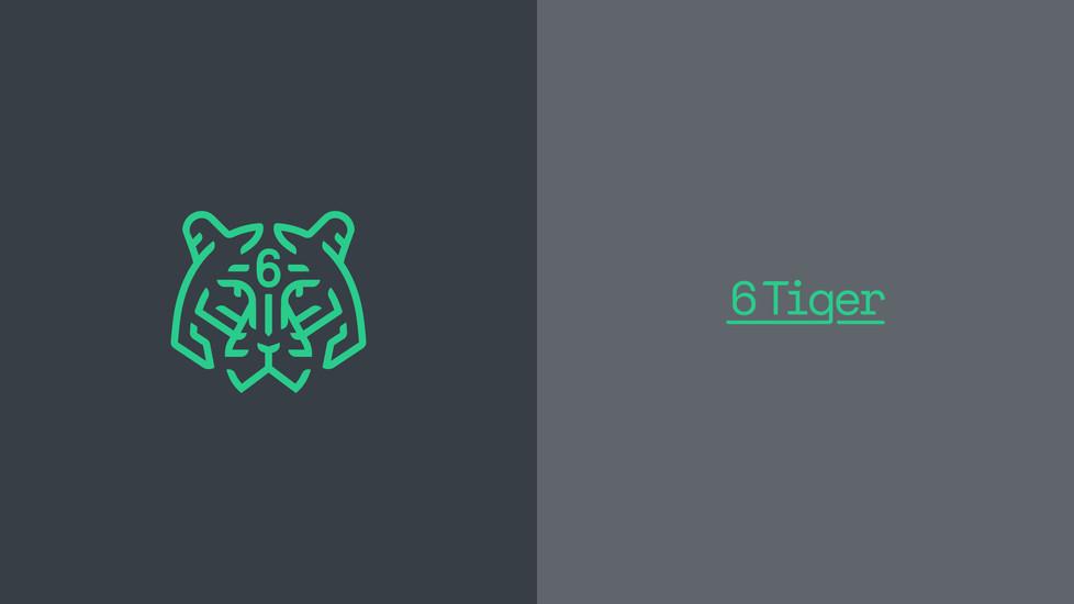 6 TIGER_02-02.jpg