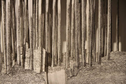 paysage à transformation, P. Laurent