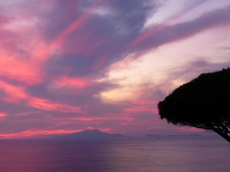 紫の夕焼けは自然のいたずら