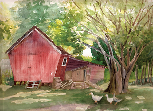 Art Note Card Duck,Duck, Goose