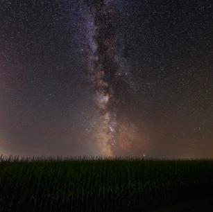 MilkyWayCornGrandinStack.jpg
