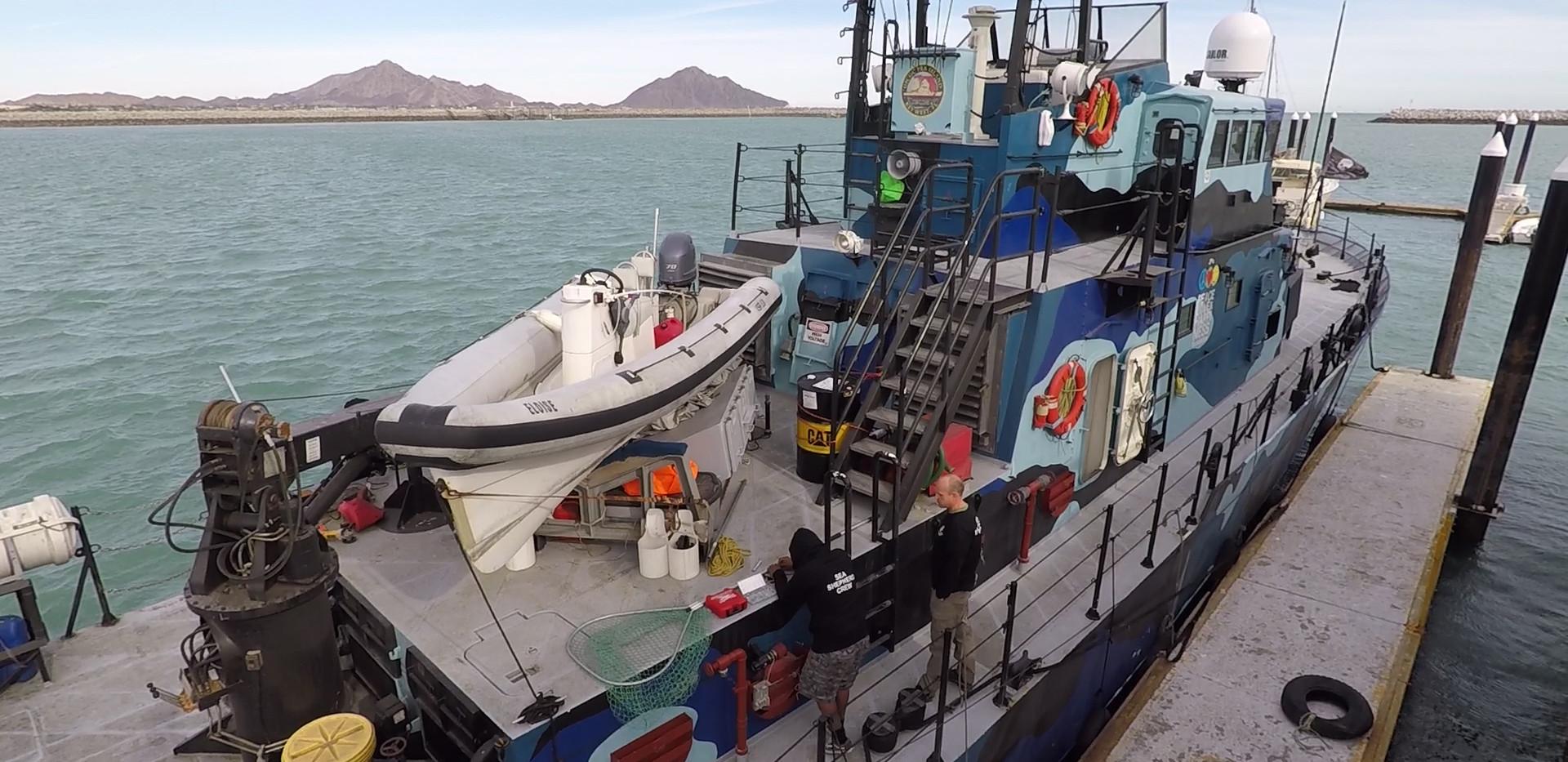 sea shepherd boat2.jpg