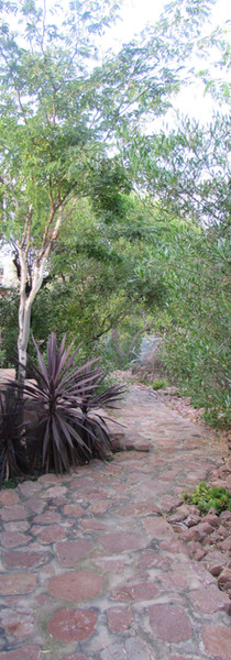 Path to Cottages