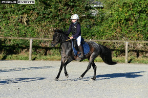 Centre Equestre Montaubert 6.jpg