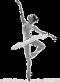 Danse classique.png