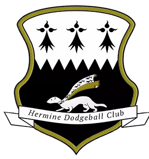LOGO - Dodge-Ball Fougeres 2.png
