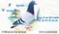Logo - Courruer Fougerais.png