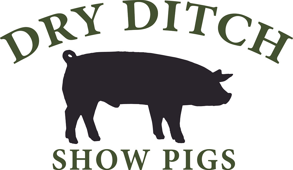 Logo for Dry Ditch Show Pigs