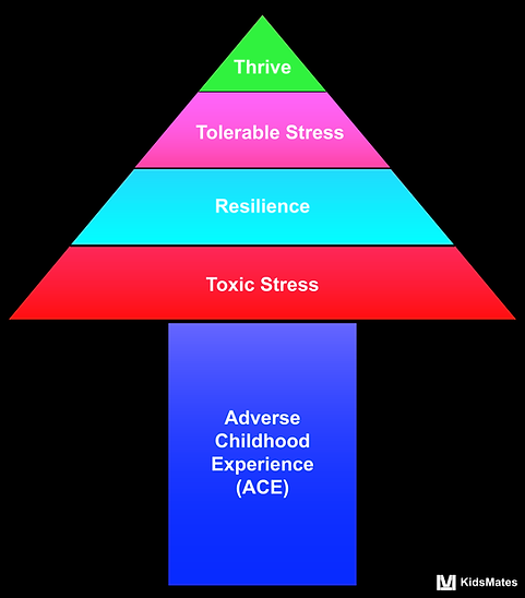Adverse Childhood Experience / ACE/ Toxic Stress / Resilience /  Tolerable Stress / Childhood Trauma / KidsMates / Dr. Rosemary Martoma