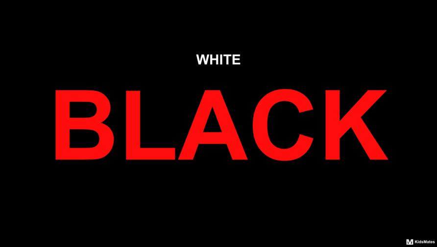 Parental Incarceration / KidsMates / Black Lives Matter