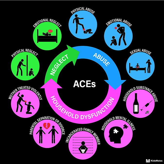 Adverse Childhood Experience / ACE/ Physical Abuse / Emotional Abuse / Sexual Abuse / Household Substance Abuse / Household Mental Illness / Incarcerated Family Member / Parental Separation / Divorce / Mother Treated Violently / Physical Neglect / Emotional Neglect / KidsMates / Dr. Rosemary Martoma