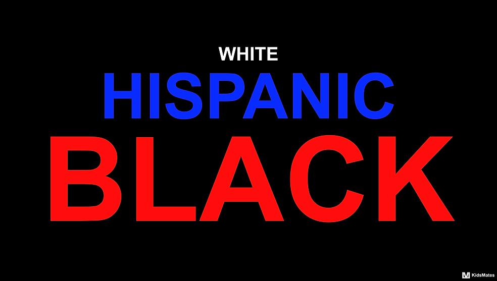 Children of Incarcerated Parents / Parental Incarceration / Incarcerated Family Member / Incarcerated People / American Incarceration / American Epidemic / Black Lives Matter / Colored Lives Matter / Racial Inequity / KidsMates