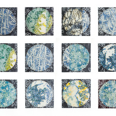 Untitled Untitled (from the Microbial Worlds series)