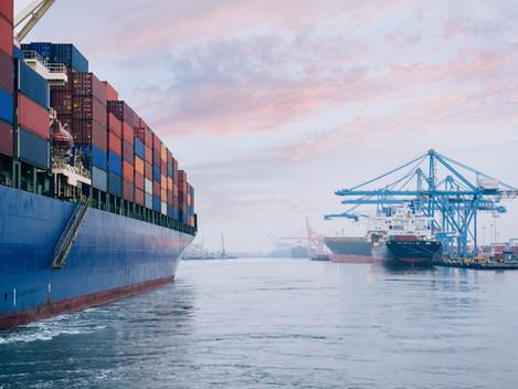 Procedure per l'imbarco, trasporto, sbarco, transito e movimentazione delle merci pericolose nei