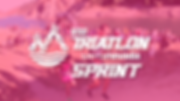 03-bloque-completo-sprint.png