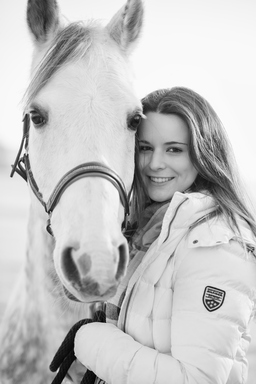 Portrait Pferd
