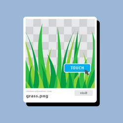 Touch Grass.jpg
