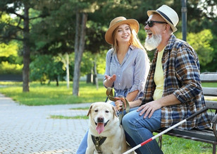 Couple-Sitting-On-Bench-With-Guide-Dog