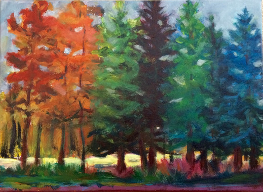 Forest Colors 16x22 $350