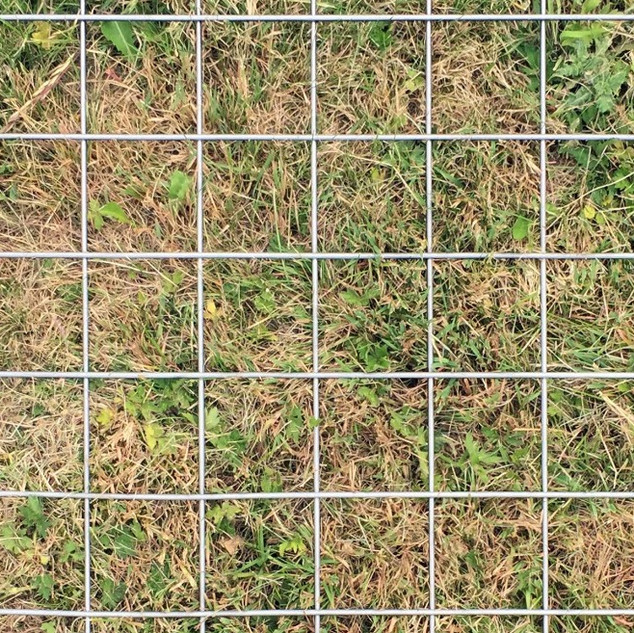 Grass Grid photoserie by Aam Solleveld