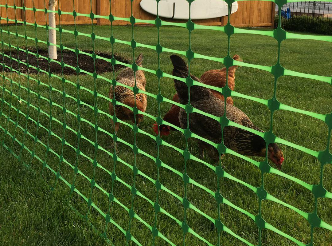 Dry Top Garden Fence
