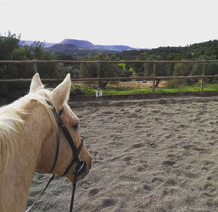 Freddy and I enjoying the view ☺️_#estab
