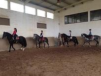 Dorso Lusitano Coudelaria Jaime Boavista Escola de Equitação