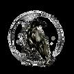 Velvet Crow Logo.png