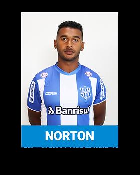 NORTON.png
