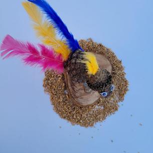 ציפור דוגמא2.jpg