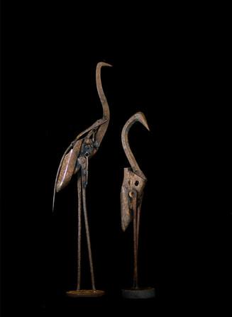 Hookbills