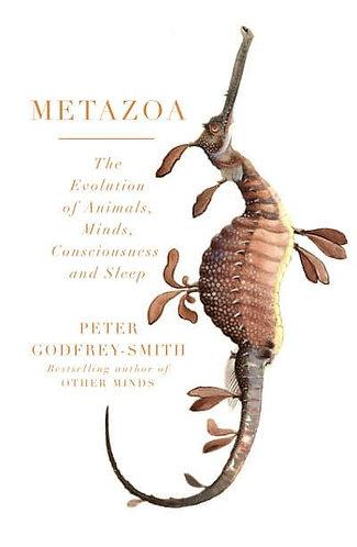 Metazoa, Peter Godfrey-Smith