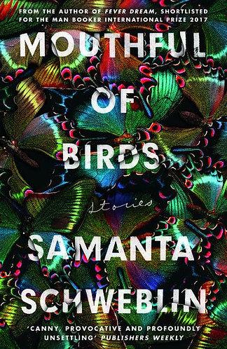 Mouthful of Birds, Samanta Schweblin