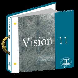 VISION 11