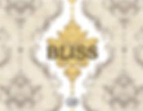 bliss cover web.jpg