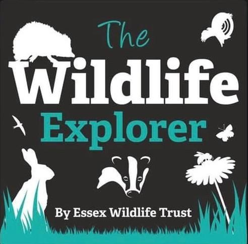 Wildlife Explorer Podcast