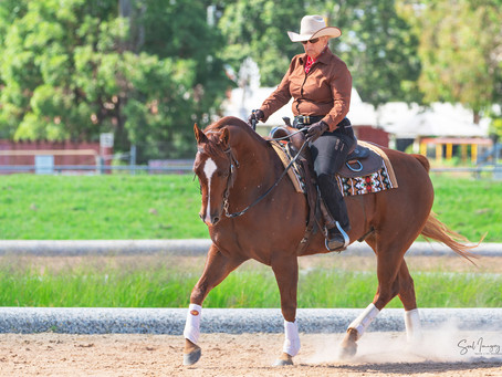 Anzac Day Western Dressage Competition